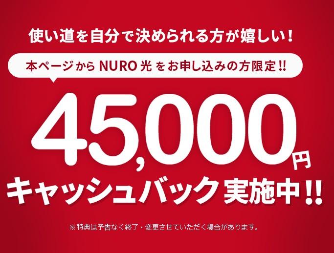 NURO光代理店:公式サイト